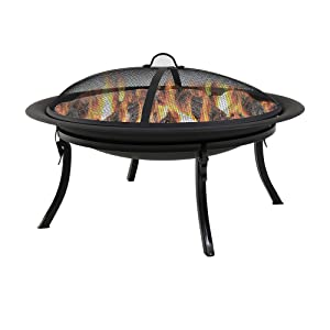 Sunnydaze Portable Outdoor Fire Pit Bowl - 29 Inch Round Bonfire Wood Burning Patio & Backyard Firepit for Outside with Spark Screen, Fireplace Poker, Folding Stand, and Carrying Case Cover