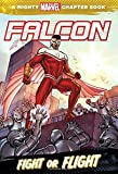 Best Teen Chapter Books - Falcon: Fight or Flight Review
