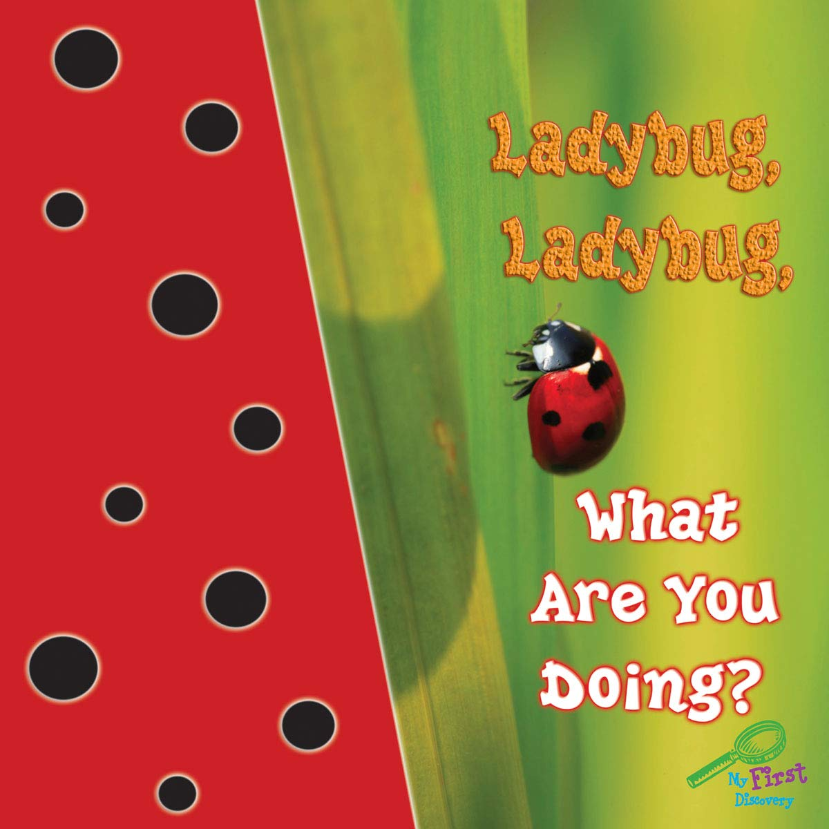 Ladybug, Ladybug, What Are You Doing? (My First Science Discovery Library) pdf epub