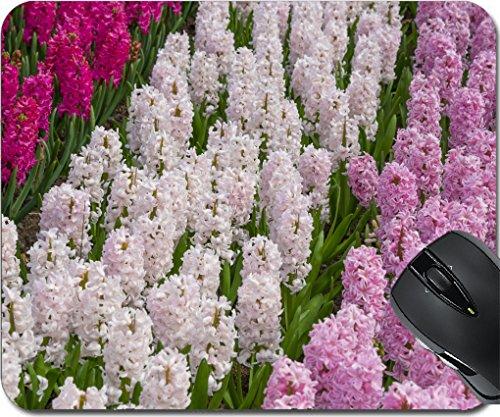 MSD Mousepad Mouse Pads/Mat design 19495149 hyacinths in the spring garden - Grow Hyacinth Bulb