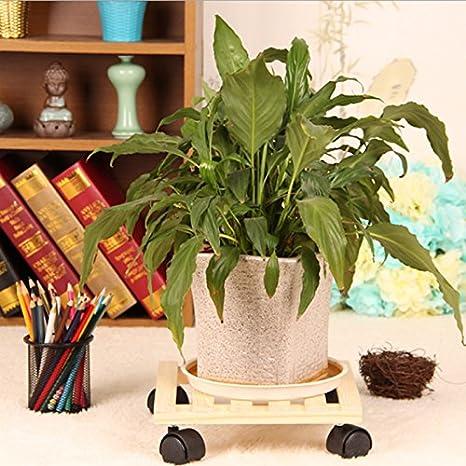 De madera planta soporte ruedas carrito para mover carro placa unfinish madera: Amazon.es: Jardín