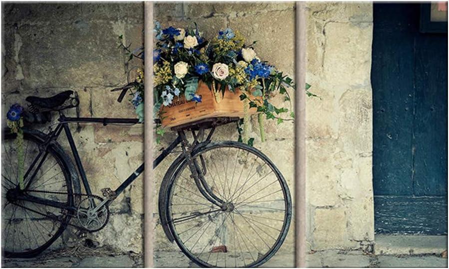 QJXX 3 Piezas Imprimir Cuadros en Lienzo Mural - Antiguo Vendimia Bicicleta con Canasta de Flores Moderno Resumen Pintura Imagen Casa Decoración,B,40x60cm*3