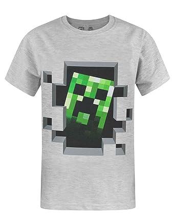 Official Minecraft Creeper Inside Boy's T-Shirt: Amazon.co.uk ...