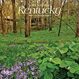 Kentucky, Wild & Scenic 2019 7 x 7 Inch Monthly Mini Wall Calendar, USA United States of America Southeast State Nature