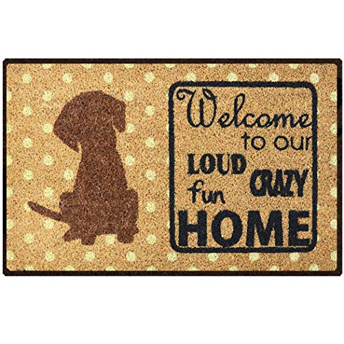 Safety Care Natural Coir Welcome Door Mat – 29.5 x 17.5...