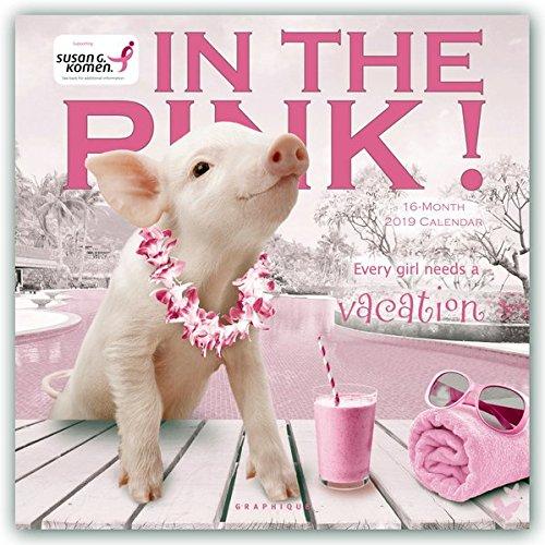 Graphique Pretty in Pink Hangable Office Wall Calendar - 16-Month 2019 Calendar, 12