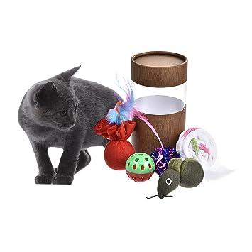 Juego de 5 juguetes para gatos con forma de peluche, juguetes pequeños cargados en barril para gatos: Amazon.es: Productos para mascotas