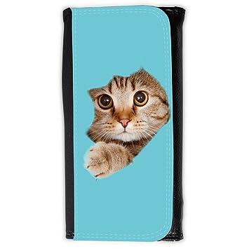 Cartera para hombre // Q05670627 Agujero papel gato Cian // Large Size Wallet: Amazon.es: Electrónica