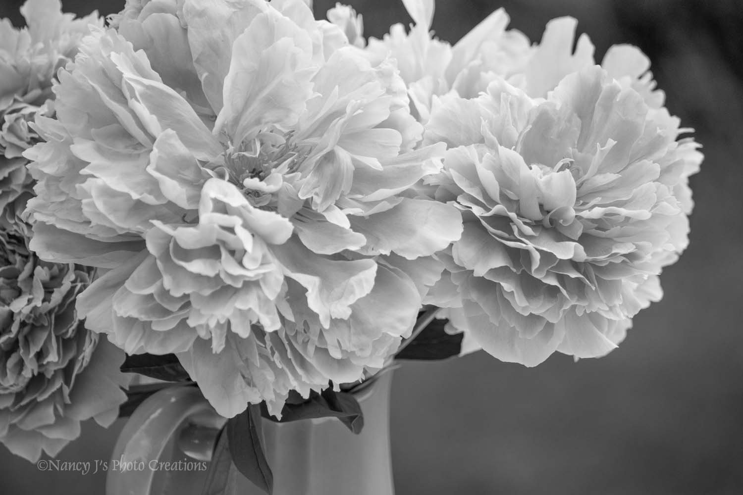 Amazon Black And White Peony Photo Unframed Floral Wall Art