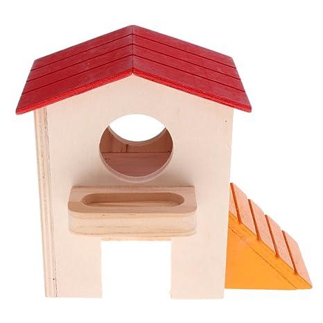 Homyl Hamster House - Caseta de dos capas para hámster sirio ...