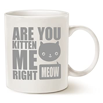 Oz Coffee Kitten Mauag You Cute 11 Me Gifts Funny Lover Cat MugsFun CupWhite Are Best Christmas Right Meow Jcl1FK