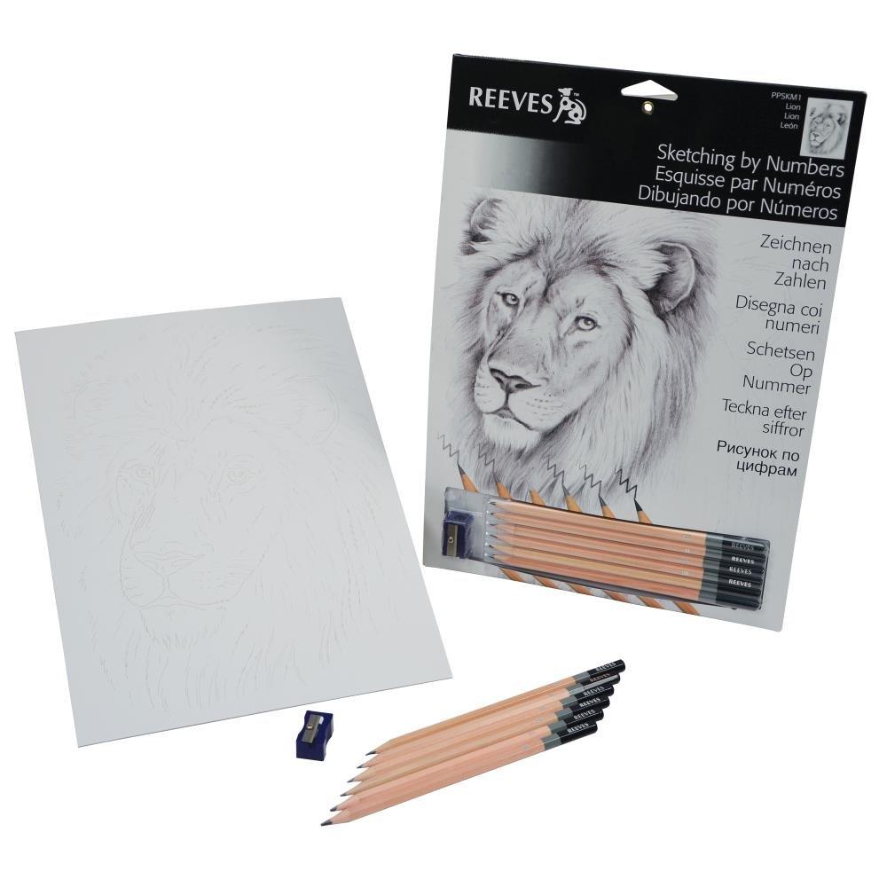 Reeves Wolf Sketching by Numbers Medium PPSKM2