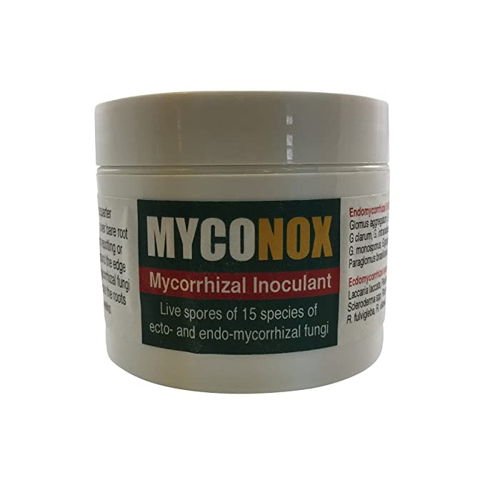 Amazon.com: Myconox - Bonsai Tree Mycorrhizal Inoculant from BonsaiOutlet: Garden & Outdoor