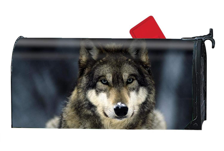ghdonat.com Spring Summer Themed XPNiao Wolf Animals Design ...
