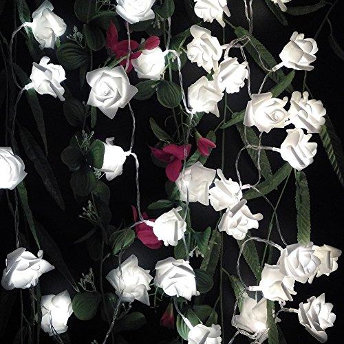 Novelty Rose Flower String Lights by Battery Operated for Wedding Garden Christmas Decor. 5M 16.4FT 50LEDs (White)