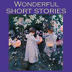 Wonderful Short Stories Audiobook