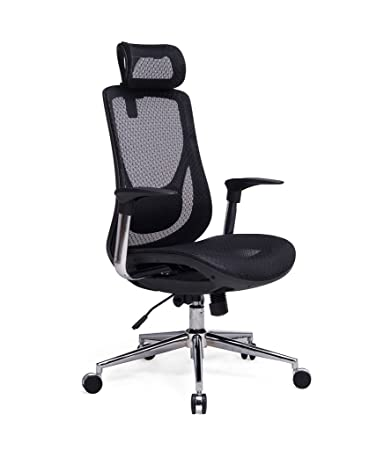 Delicieux Amazon.com: VIVA OFFICE High Back Executive Mesh Chair With Adjustable  Headrest: Kitchen U0026 Dining