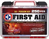 Be Smart Get Prepared 250 Piece First Aid Kit with ANSI Guidelines, 50 Person, 1.96 Pound