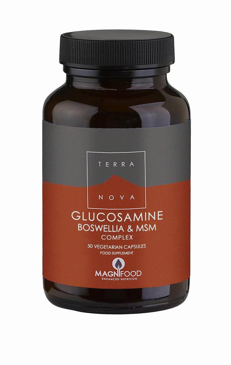 Glucosamina, Boswelia y MSM Comprimidoslex 100 Cápsulas Terranova ...