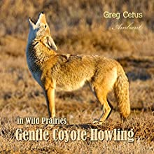 Gentle Coyote Howling in Wild Prairies Audiobook by Greg Cetus Narrated by Interactive Media