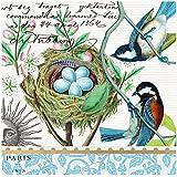 Michel Design Works 20-Count 3-Ply Paper Cocktail Napkins, Bird Nest