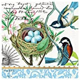#6: Michel Design Works 20-Count 3-Ply Paper Cocktail Napkins, Bird Nest