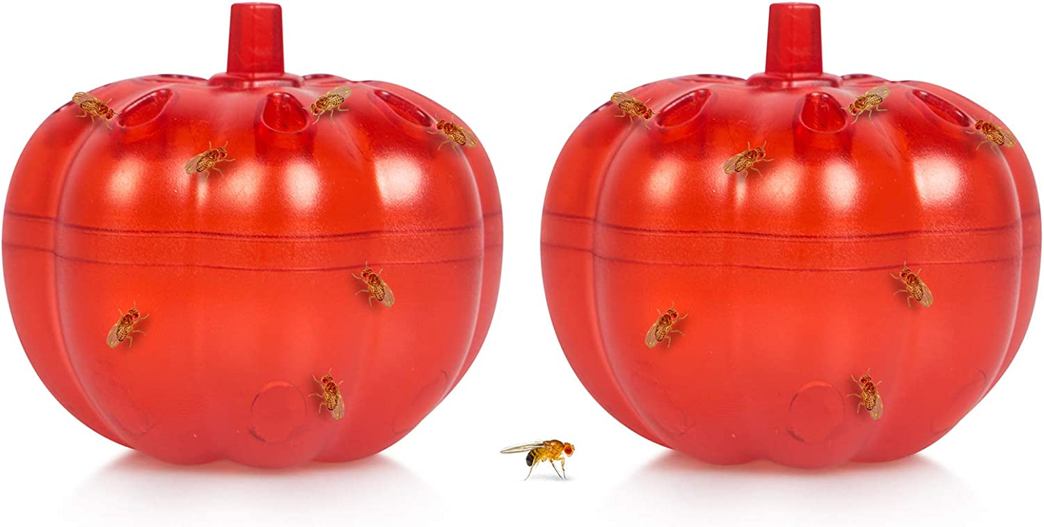 2 Pack Fruit Fly Traps Indoor, Gnat Killer for Indoors/Kitchen, Fly Trap for Home