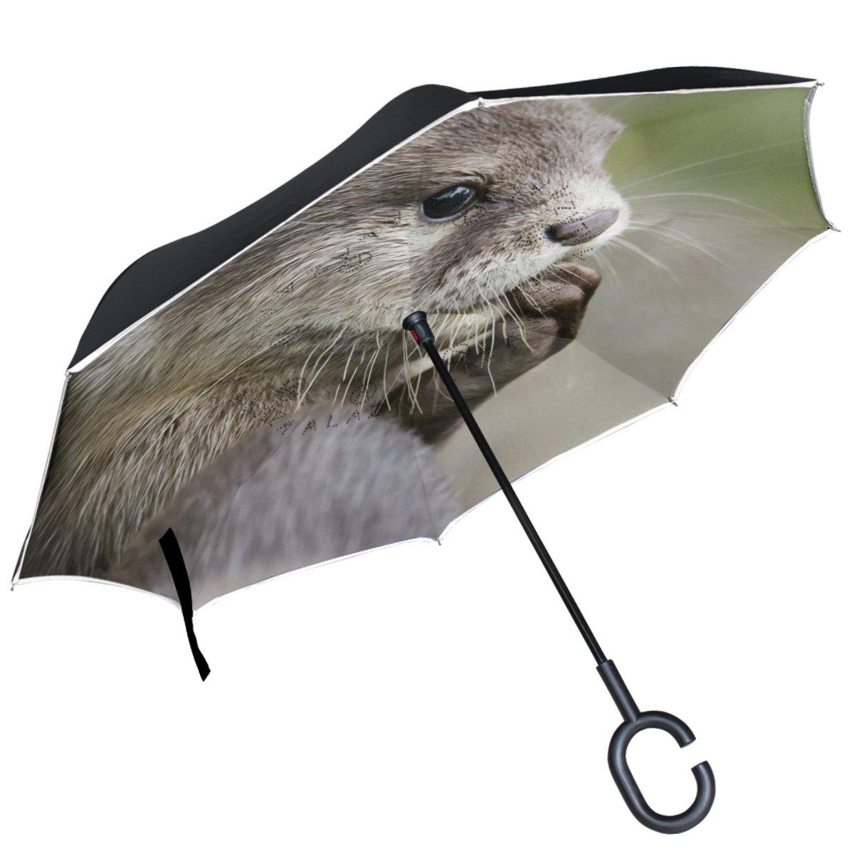 Custom Aurora Borealis Compact Travel Windproof Rainproof Foldable Umbrella