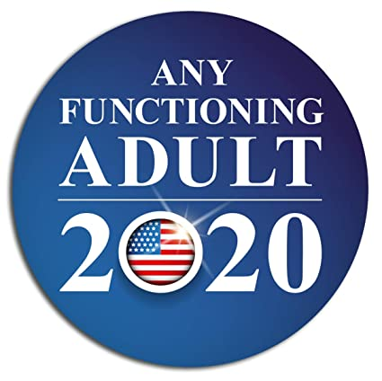 Image result for functioning adult 2020