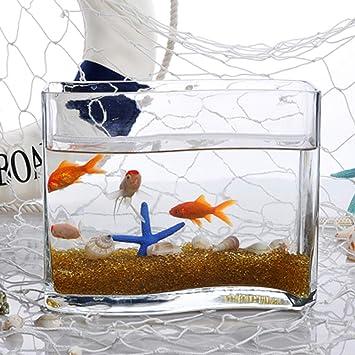 Jiangu Serbatoio Di Pesce In Vetro A Forma Di S Vaschetta Per Pesci Rossi Moda Desktop Mini Acquario Vaso Di Vetro Idroponico Amazon It Prodotti Per Animali Domestici