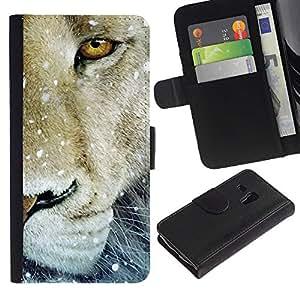 """Samsung Galaxy S3 MINI / i8190 (Not For Galaxy S3) , la tarjeta de Crédito Slots PU Funda de cuero Monedero caso cubierta de piel ("""" Lion Snow Winter Animal King Nature"""")"""