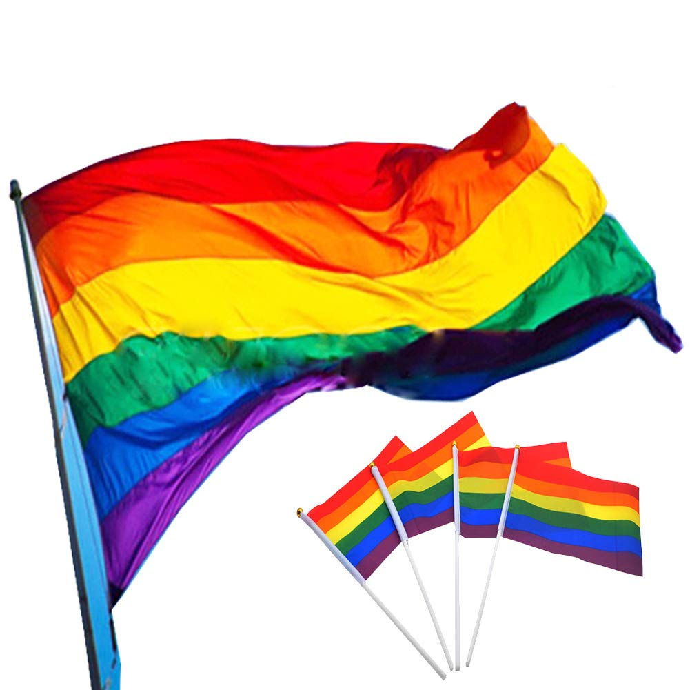 Gay Pride Rainbow Flag, 150 x 90 cm Large Polyester Hanging Rainbow Gay Lesbian Flag and 10 Pieces Small Rainbow Flag 14 x 21 cm for LGBT Pride Parade Festival Carnival Mardi Gras Party Decorations pveath