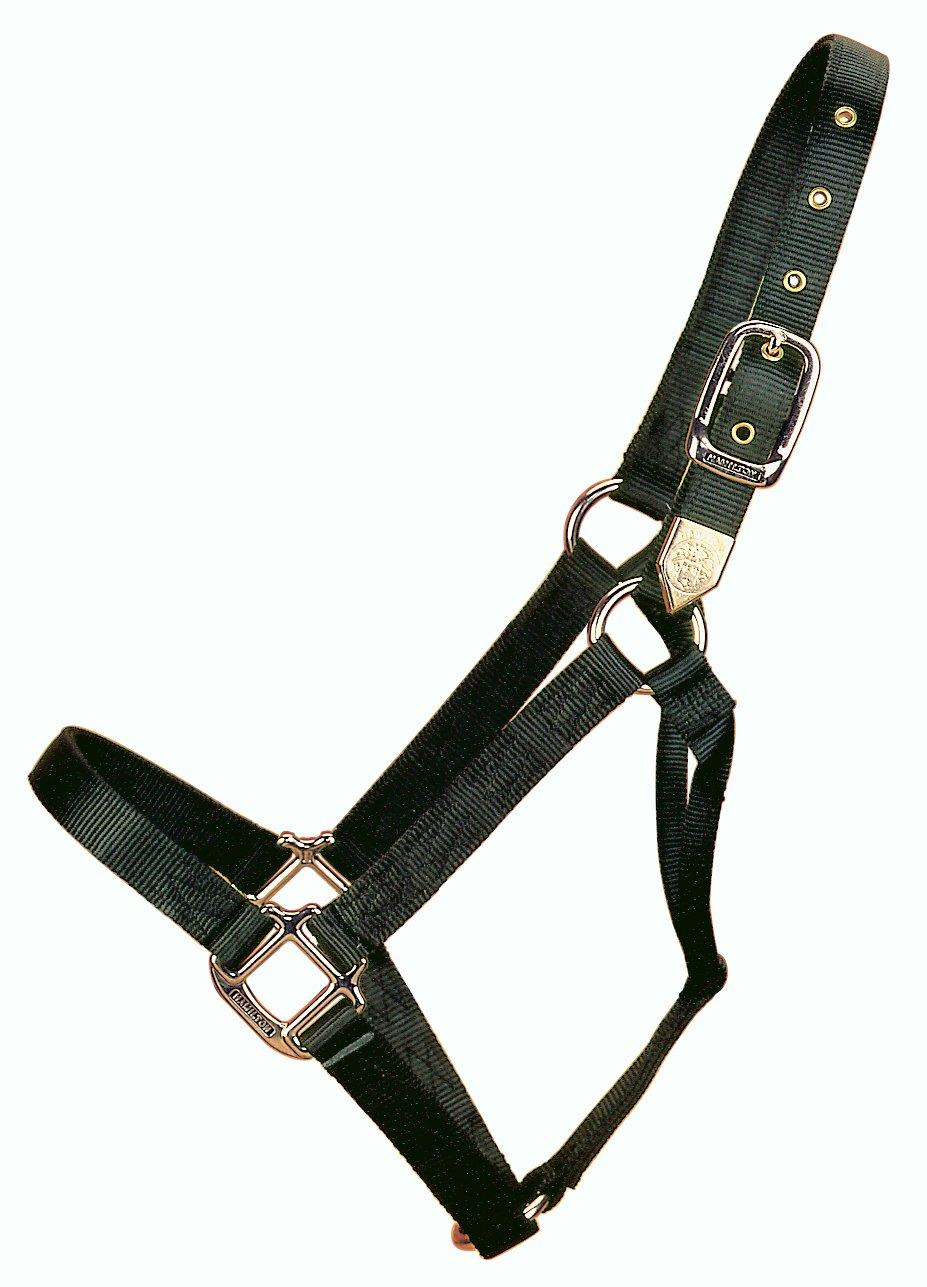 Black Draft, 1100 + Pounds Black Draft, 1100 + Pounds Hamilton 1-Inch Nylon Horse Halter, X-Large, Black