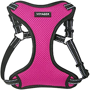 Voyager Step-in Flex Dog Harness - All Weather Mesh, Step in Adjustable Harness for Small and Medium Dogs by Best Pet Supplies - Fuchsia, Large