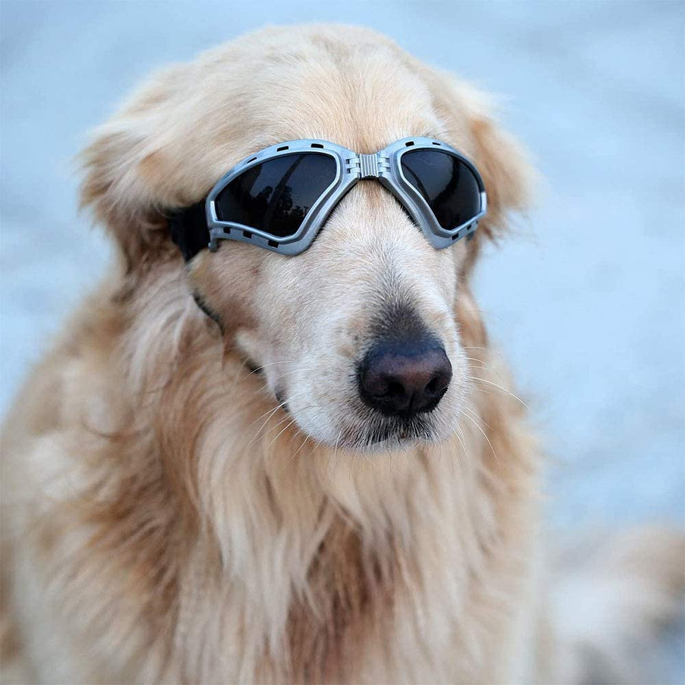 JKGHK Gafas de Sol para Perros, Perro Gafas para Perros pequeños y medianos Impermeable Plegable Protector Ocular Protección UV Antivaho (Gris)