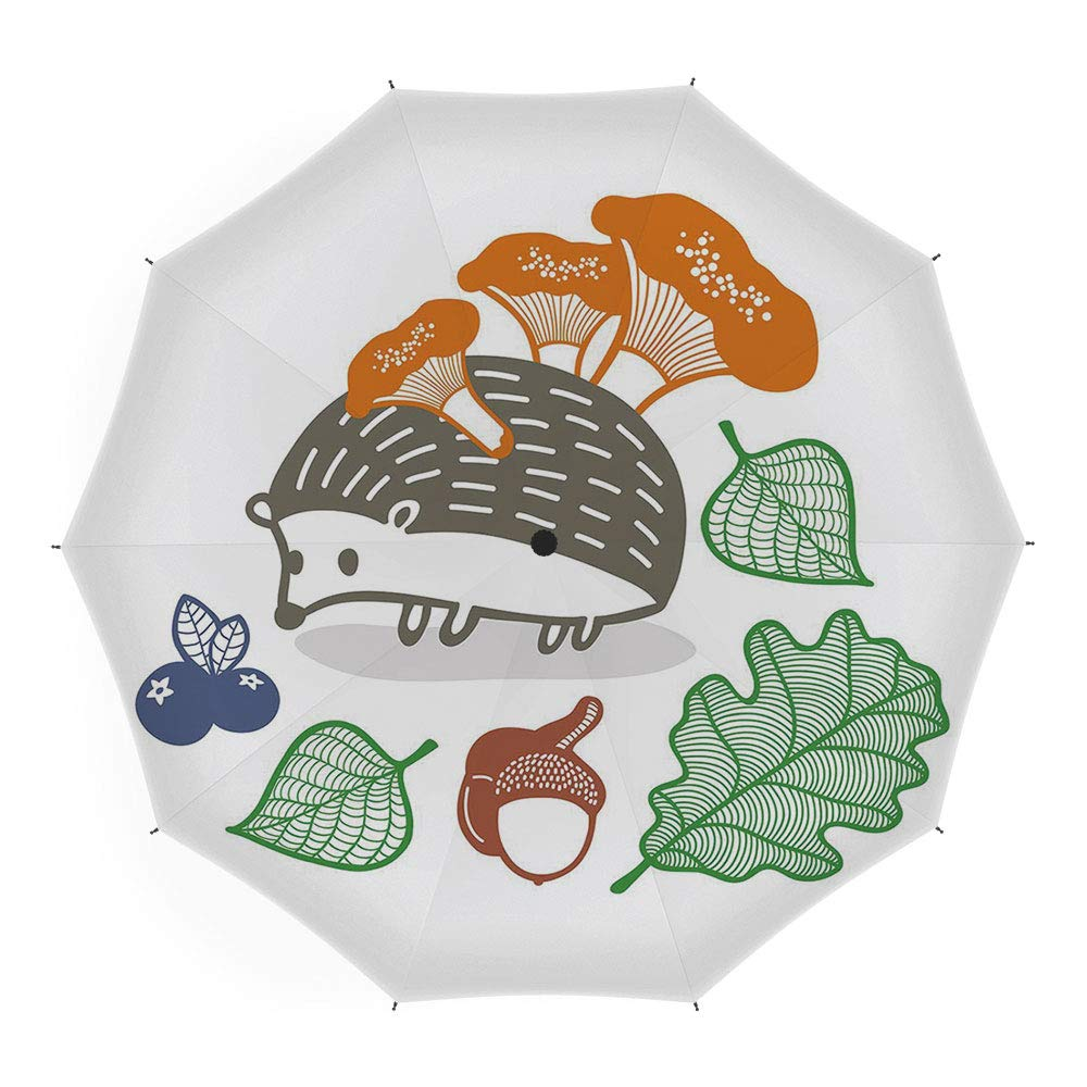 fae38eb23053 Amazon.com: Umbrellas Compact Travel Umbrella Auto Open Close ...