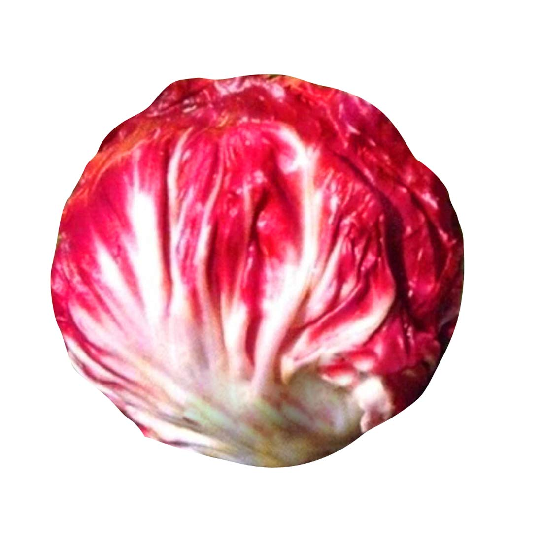 Futaba Red Cabbage Vegetable Seeds 100pcs Amazon In Home Improvement