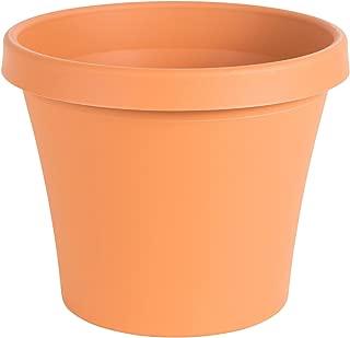 "product image for Bloem Terra Pot Planter - 14"" - Terra Cotta"