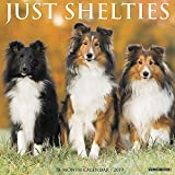 Just Shelties 2019 Calendar