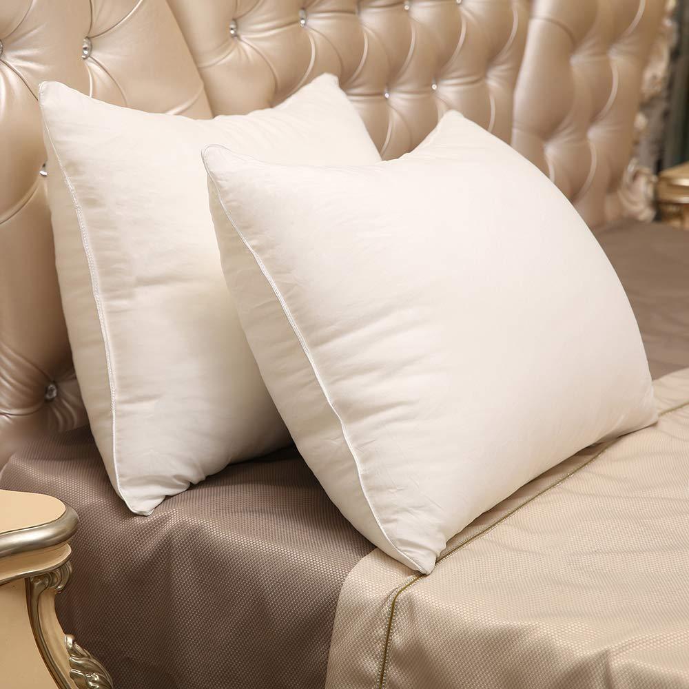 Standard Fringe Best Price 2-Pack Luxury Gel Fiber Pillow Down Alternative Design with