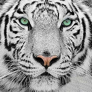 Kit Tiger Portrait Up Close Exclusive Cross Stitch Chart
