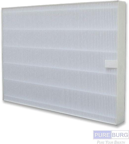 Pureburg - Filtro HEPA de Repuesto para purificadores de Aire ...