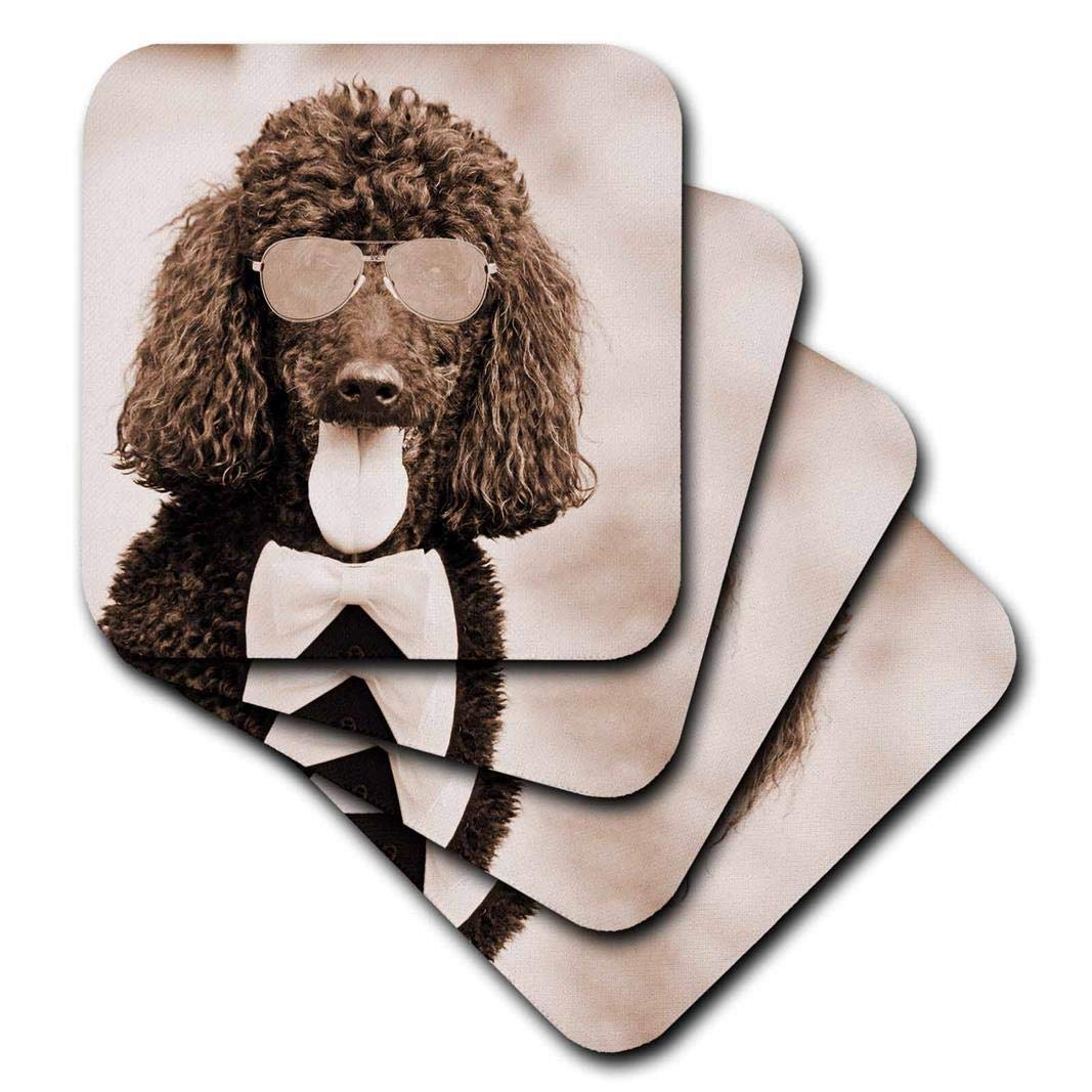 Set of 4 Popular Image CST/_218220/_3 3dRose Cool Poodle Wearing Sunglasses and Bow Tie - Ceramic Tile Coasters