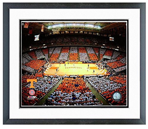 NCAA Tennessee Vols Thompson Bolling Arena Photo (Size: 22.5