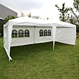 Peach Tree 10'x20' Shelter Canopy Outdoor Wedding Party Tent With Wall Panels, White