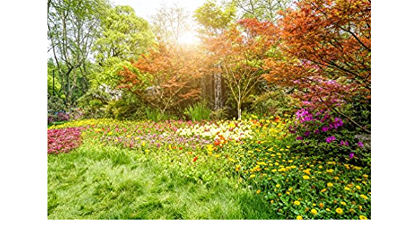 Farmland 10x15 FT Photography Backdrop Wooden Garden Plank with Swirled Spring Season Bloom Up Tranquil Serene Landscape Background for Party Home Decor Outdoorsy Theme Vinyl Shoot Props Blue Brown