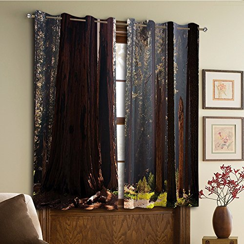 Custom design curtains/Vintage Lace Window Curtain/Grommet Top Blackout Curtains/Thermal Insulated Curtain For Bedroom And Kitchen-Set of 2 Panels(Parks Northeast Greenland Surreal Public Serene)