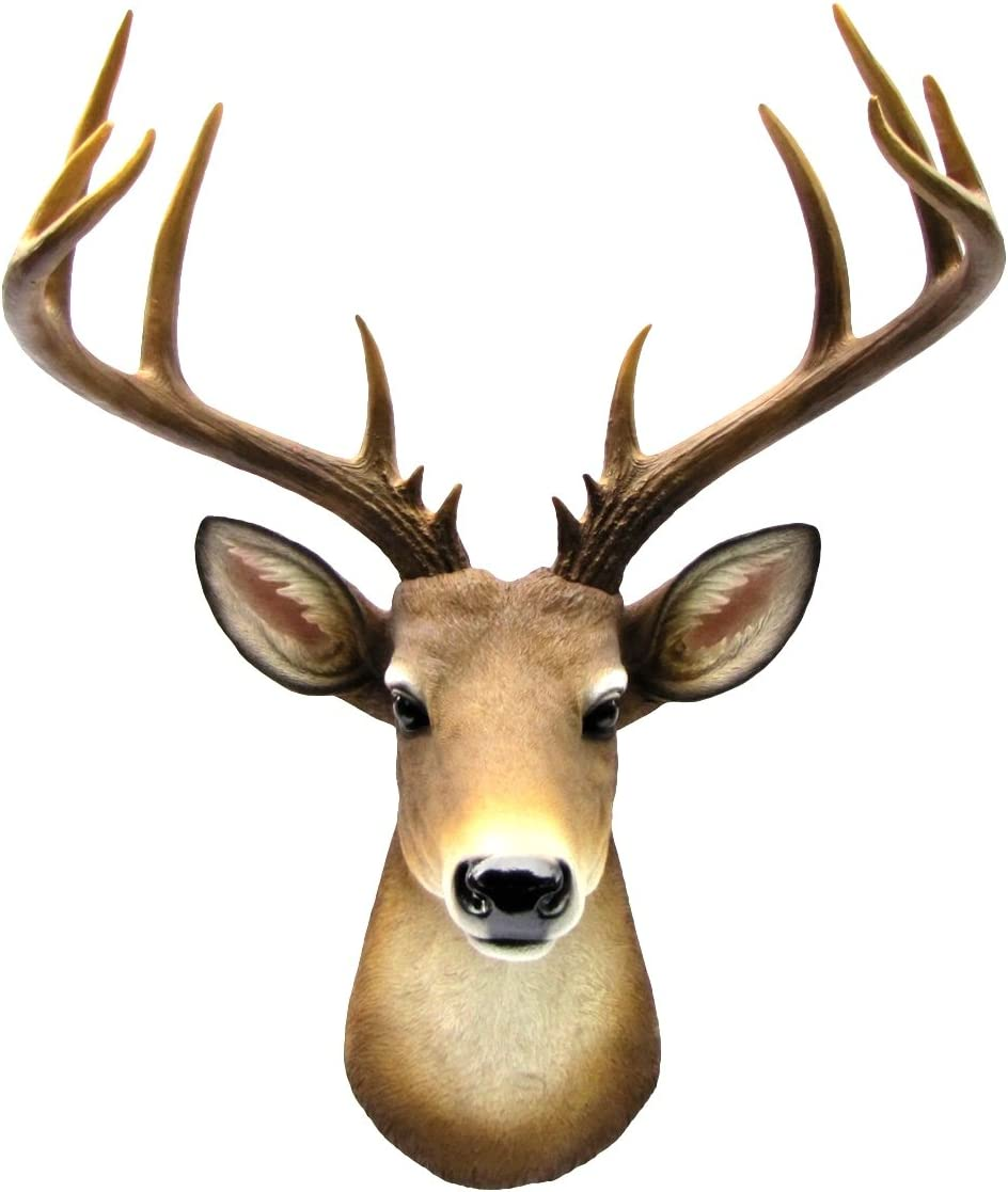 Amazon Com Wall Mount Mule Deer Shoulder Bust Fake Taxidermy Buck Head Man Cave Cabin Decor Everything Else