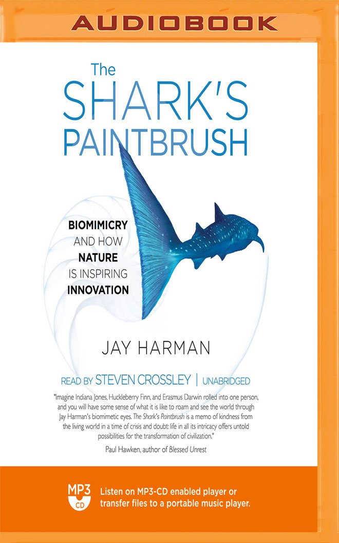 The Sharks Paintbrush Biomimicry And How Nature Is Inspiring