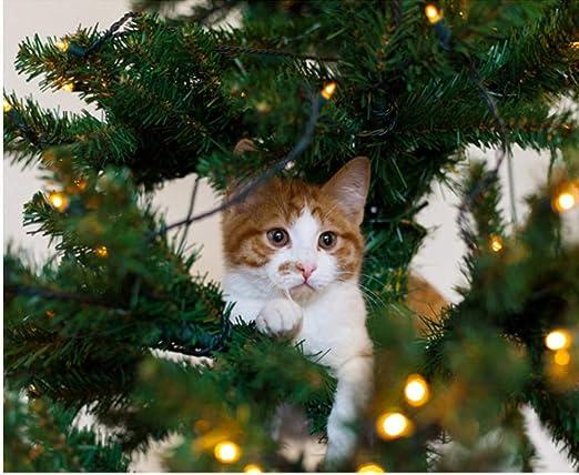 GUOXIN12 Gatos Vacaciones Árbol de Navidad Ramas Foto de Animales ...